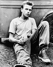This is an image of 11869 River Phoenix Photograph & Poster