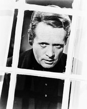 This is an image of 12336 Patrick McGoohan Photograph & Poster