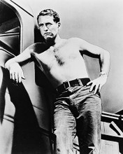 This is an image of 13486 Paul Newman Photograph & Poster