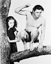 This is an image of 14221 Tarzan Photograph & Poster