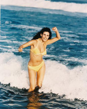 This is an image of 23384 Raquel Welch Photograph & Poster