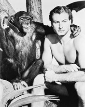 This is an image of 14734 Lex Barker Photograph & Poster
