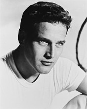 This is an image of 14948 Paul Newman Photograph & Poster
