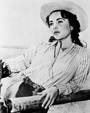This is an image of 15994 Elizabeth Taylor Photograph & Poster