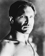 This is an image of 16553 Harrison Ford Photograph & Poster