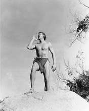This is an image of 17678 Johnny Weissmuller Photograph & Poster