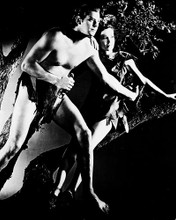 This is an image of 18111 Tarzan Photograph & Poster
