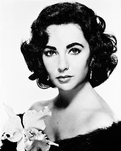This is an image of 19228 Elizabeth Taylor Photograph & Poster