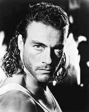 This is an image of 19233 Jean-Claude Van Damme Photograph & Poster