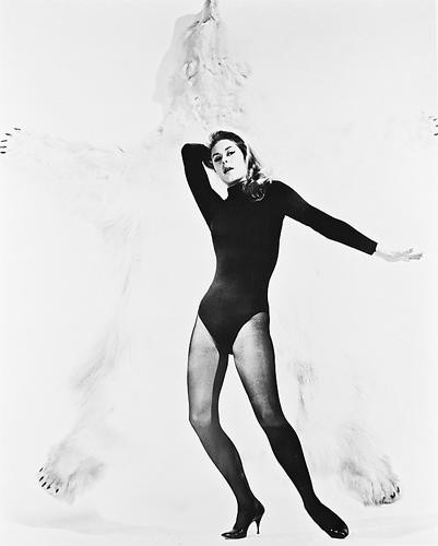 This is an image of 19847 Elizabeth Montgomery Photograph & Poster