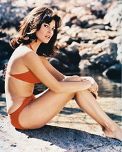 This is an image of 23621 Raquel Welch Photograph & Poster