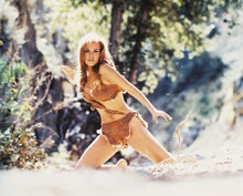 This is an image of 23732 Raquel Welch Photograph & Poster