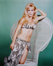 This is an image of 24726 Barbara Eden Photograph & Poster