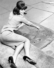 This is an image of 100008 Natalie Wood Photograph & Poster