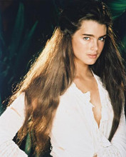 This is an image of 25671 Brooke Shields Photograph & Poster