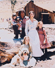 This is an image of 26949 Little House on the Prairie Photograph & Poster
