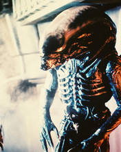 This is an image of 27118 Alien Photograph & Poster