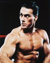 This is an image of 27502 Jean-Claude Van Damme Photograph & Poster