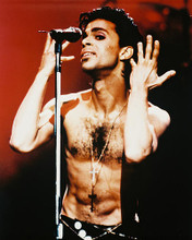 This is an image of 28357 Prince Photograph & Poster