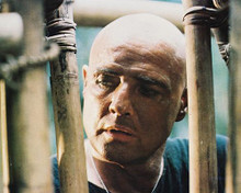 This is an image of 29646 Marlon Brando Photograph & Poster
