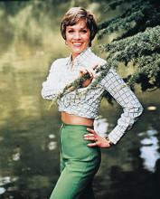 This is an image of 29905 Julie Andrews Photograph & Poster