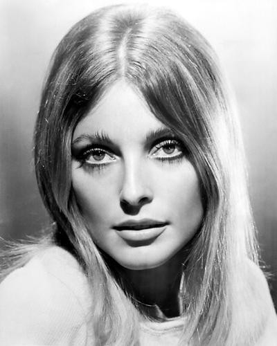 This is an image of 100272 Sharon Tate Photograph & Poster