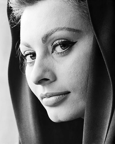 This is an image of 100423 Sophia Loren Photograph & Poster