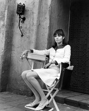This is an image of 100174 Barbara Feldon Photograph & Poster