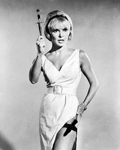 This is an image of Photograph & Poster of Janet Leigh 100847