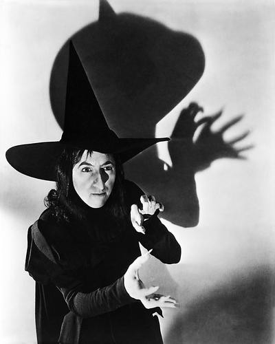 This is an image of Photograph & Poster of The Wizard of Oz 100892