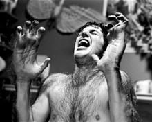 This is an image of Photograph & Poster of American Werewolf in London 101266