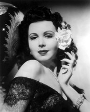 This is an image of Photograph & Poster of Ann Miller 101603
