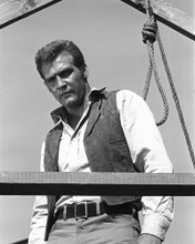 This is an image of Photograph & Poster of Lee Majors 101701