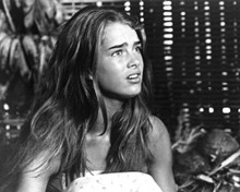This is an image of Photograph & Poster of Brooke Shields 101735