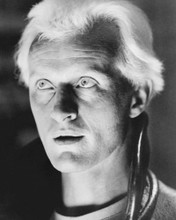 This is an image of Photograph & Poster of Rutger Hauer 101884