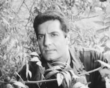 This is an image of Photograph & Poster of Peter Lupus 101922