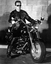 This is an image of Photograph & Poster of Arnold Schwarzenegger 101939