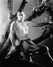 This is an image of Photograph & Poster of Johnny Weissmuller 102115