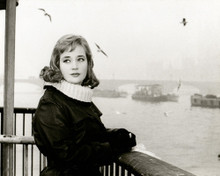 This is an image of Photograph & Poster of Sylvia Syms 102179