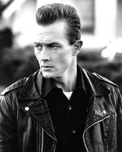 This is an image of Photograph & Poster of Robert Patrick 102203