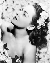 This is an image of Photograph & Poster of Olivia De Havilland 102272