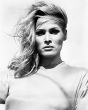 This is an image of Photograph & Poster of Ursula Andress 102307