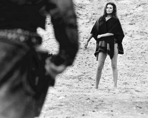 This is an image of Photograph & Poster of Raquel Welch 102321