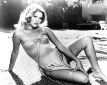 This is an image of Photograph & Poster of Audrey Landers 102404