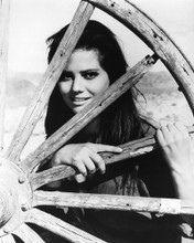 This is an image of Photograph & Poster of Claudia Cardinale 102430