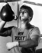 This is an image of Photograph & Poster of Sylvester Stallone 102566