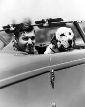 This is an image of Photograph & Poster of Clark Gable 102629