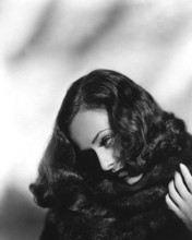 This is an image of Photograph & Poster of Paulette Goddard 102633
