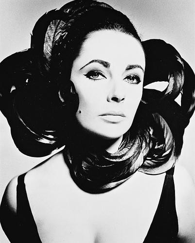 This is an image of 160971 Elizabeth Taylor Photograph & Poster