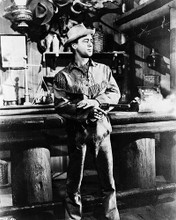 This is an image of 161235 Alan Ladd Photograph & Poster